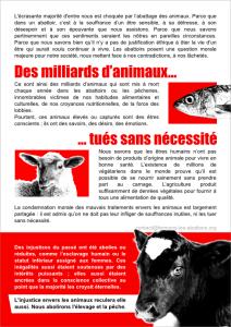 Tract Marche pour la fermeture des abattoirs 2012-verso