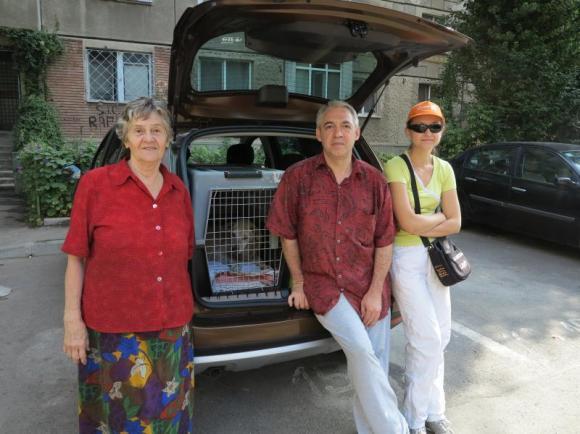 Avedis Ghazarian, militant roumain
