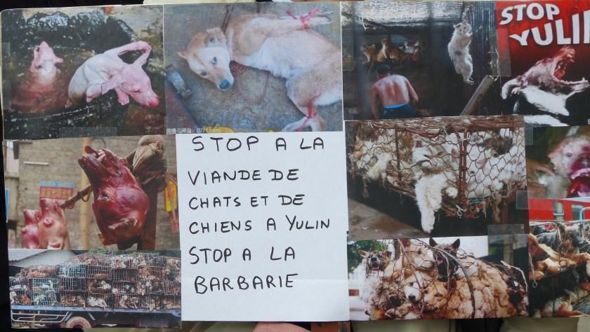 Stop au festival de Yulin (Paris - 14 juin 2016)