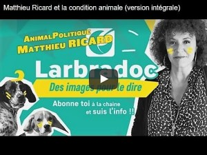 Matthieu Ricard_AnimalPolitique_Labradoc