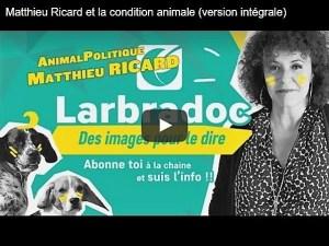 Matthieu Ricard_AnimalPolitique_Labradoc droits des animaux