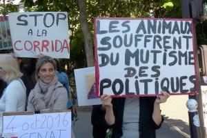Stop à la corrida (action L214 devant le Sénat_04 octobre 2016)