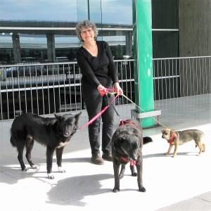 Danielle-Arrivée de Baloo et Winnie (04 mai 2012)