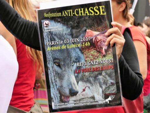 La Voix des Loups 2017_Panneau de la manifestation