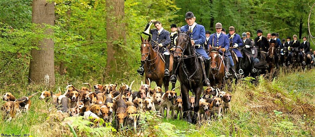 Equipage La Futaie des Amis en forêt de Compiègne (2)