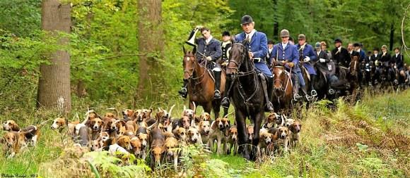 Chasse Equipage La Futaie des Amis en forêt de Compiègne (2)