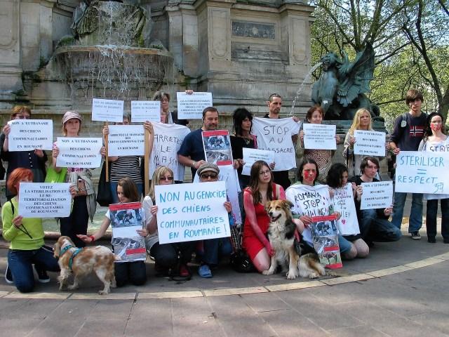 Flashmob contre l'extermination des chiens de Roumanie - Paris 10 avril 2011_03