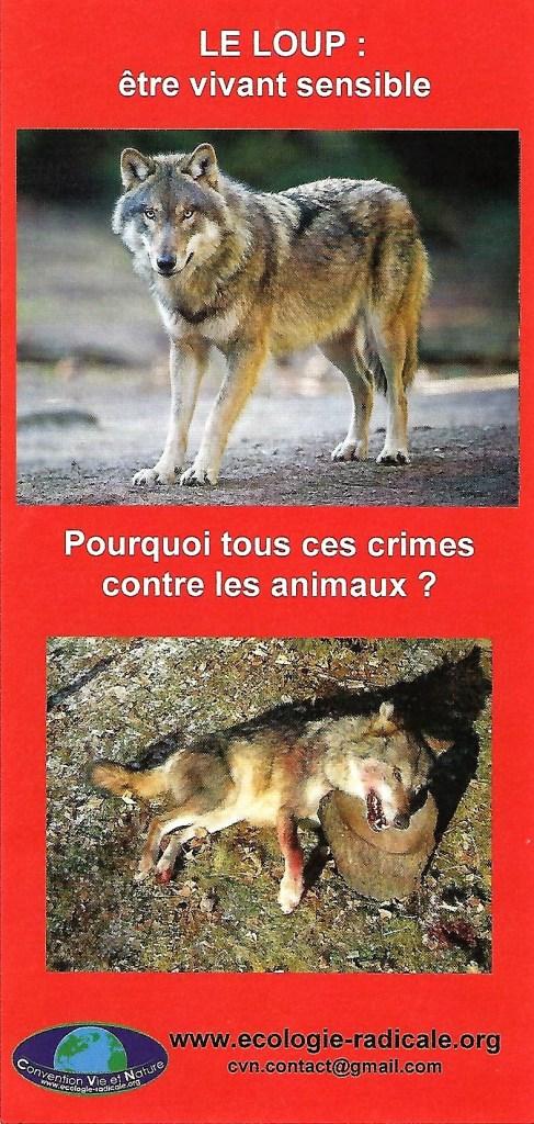 Le Loup_CVN tirs de loups imposture
