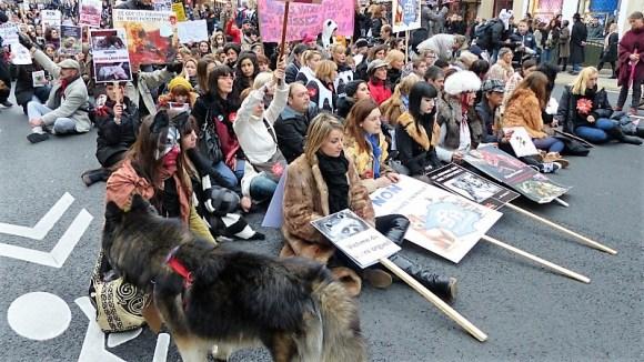 manifestations anti-fourrure