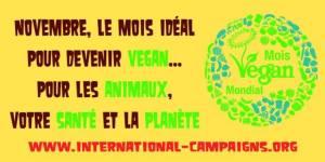 Novembre_Mois Vegan Mondial
