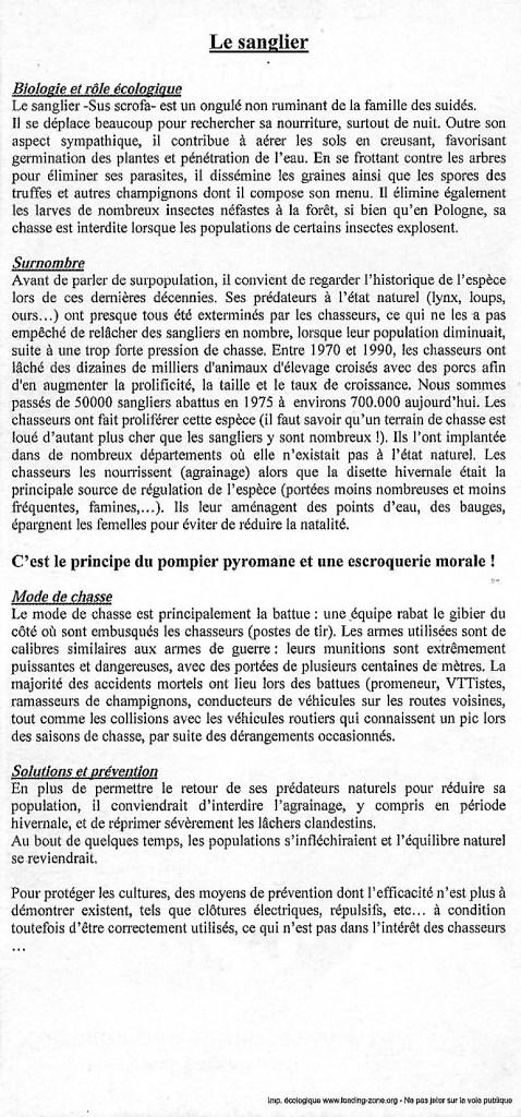 Sanglier_CVN sangliers chasseurs régulation