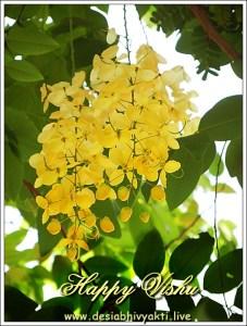 Konde or Vishu Konna flower greeting card for Vishu Festival