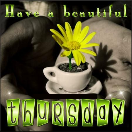 Have Beautiful Thursday Desicomments Com