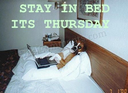 Stay In Bed Its Thursday