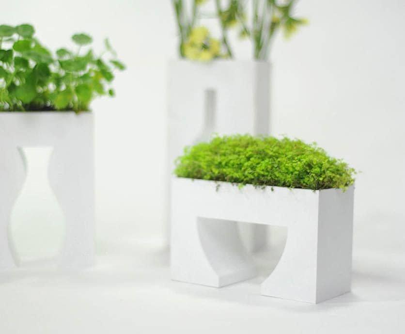 Questa tipologia di vasi può essere sia da interni che da esterni. Piante E Arredamento D Interni Design Miss