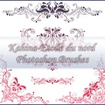 Ornamental Brushes Set 2 by: Etoile-du-nord