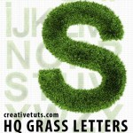 Grass Alpha