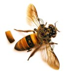 Cute Vintage Steampunk Bee Tutorial