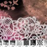 Hi Res Lace Brushes 2