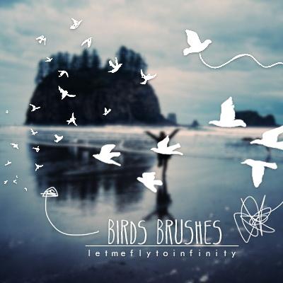 Birds-brushes