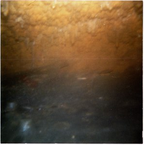Caving - 1986 - tiny soda straws that were in a small side chamber