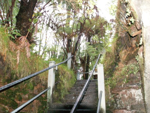 Stairs from Thurston Lava Tube, Hawaii Volcanoes National Park - The Underground World of Caves