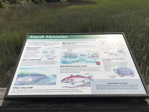 Marsh Mysteries Information Board on the Boardwalks at Coastal Discovery Museum