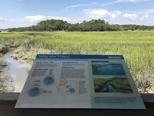 Displays from the Boardwalk at Coastal Discovery Museum at Honey Horn