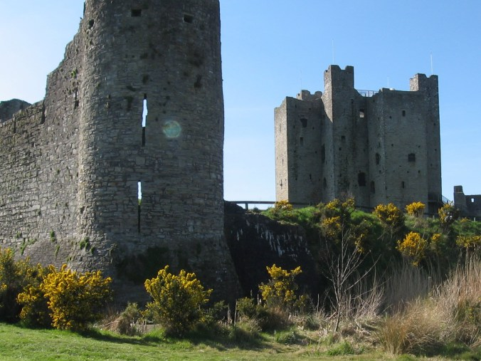 Gorse Thickets around Trim Castle