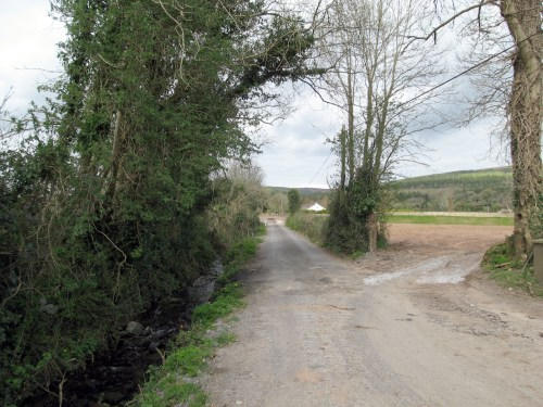 Unnamed Road, somewhere between West Burgess and Cahir, Ireland