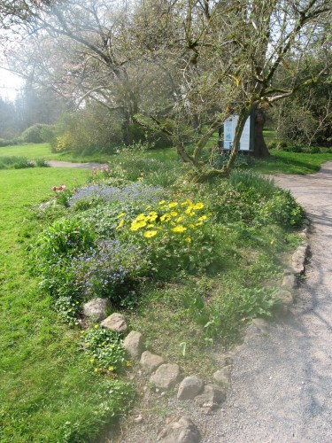 Walking paths with herbaceous borders at Birr Castle Gardens