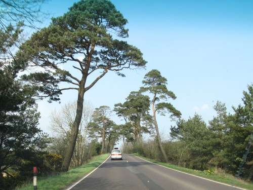 Driving toward Ballycastle, somewhere in Ireland