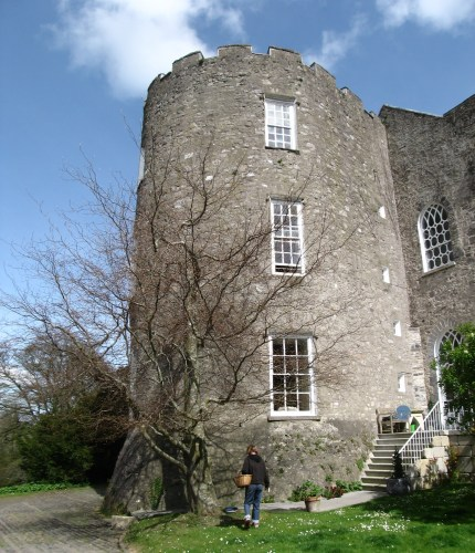 Side of Leixlip Castle. The steps lead to the Front Hall.