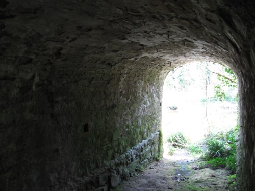 Small chamber under Leixlip Castle Folly through which water used to flow