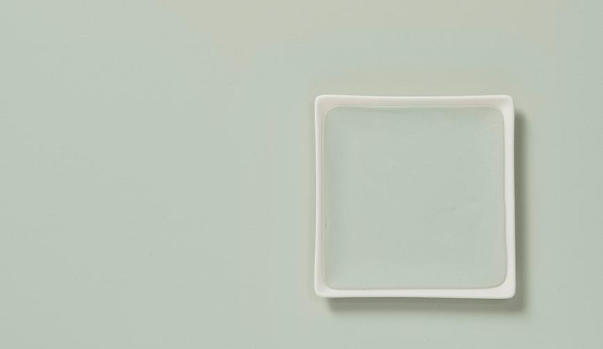 Tranquil dawn - flexa - kleur van het jaar - 2020 - designaresse