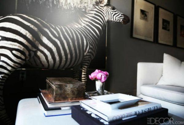 Decorating with Animal Prints: Zebra