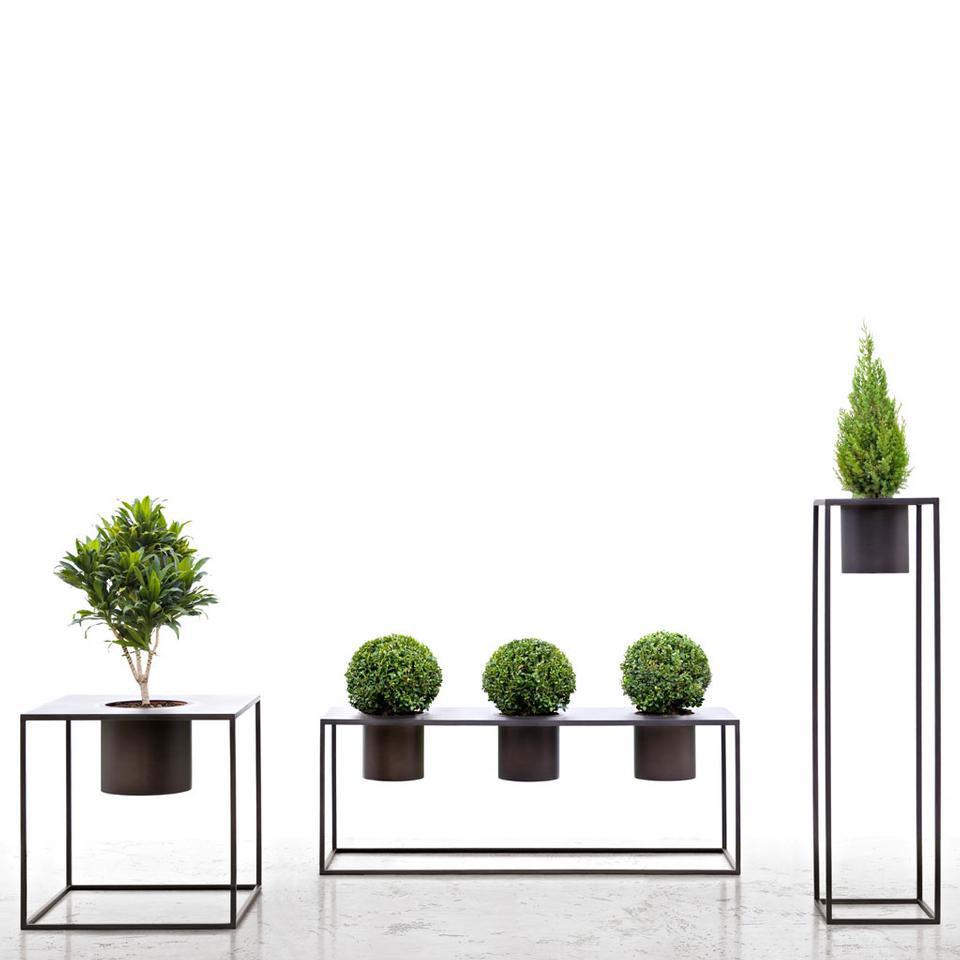 Su bricobravo un'ampia gamma di vasi da interni, classici e di. Vasi Design De Castelli Riviera Design At Home Blog Di Arredamento