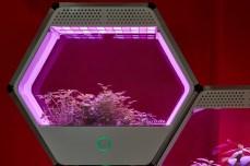 serra-tecnologica-linfa-robonica