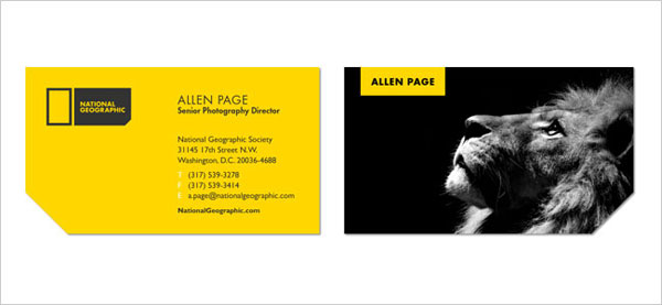 National-geographic-business-card-designs-&-rebranding-project-2