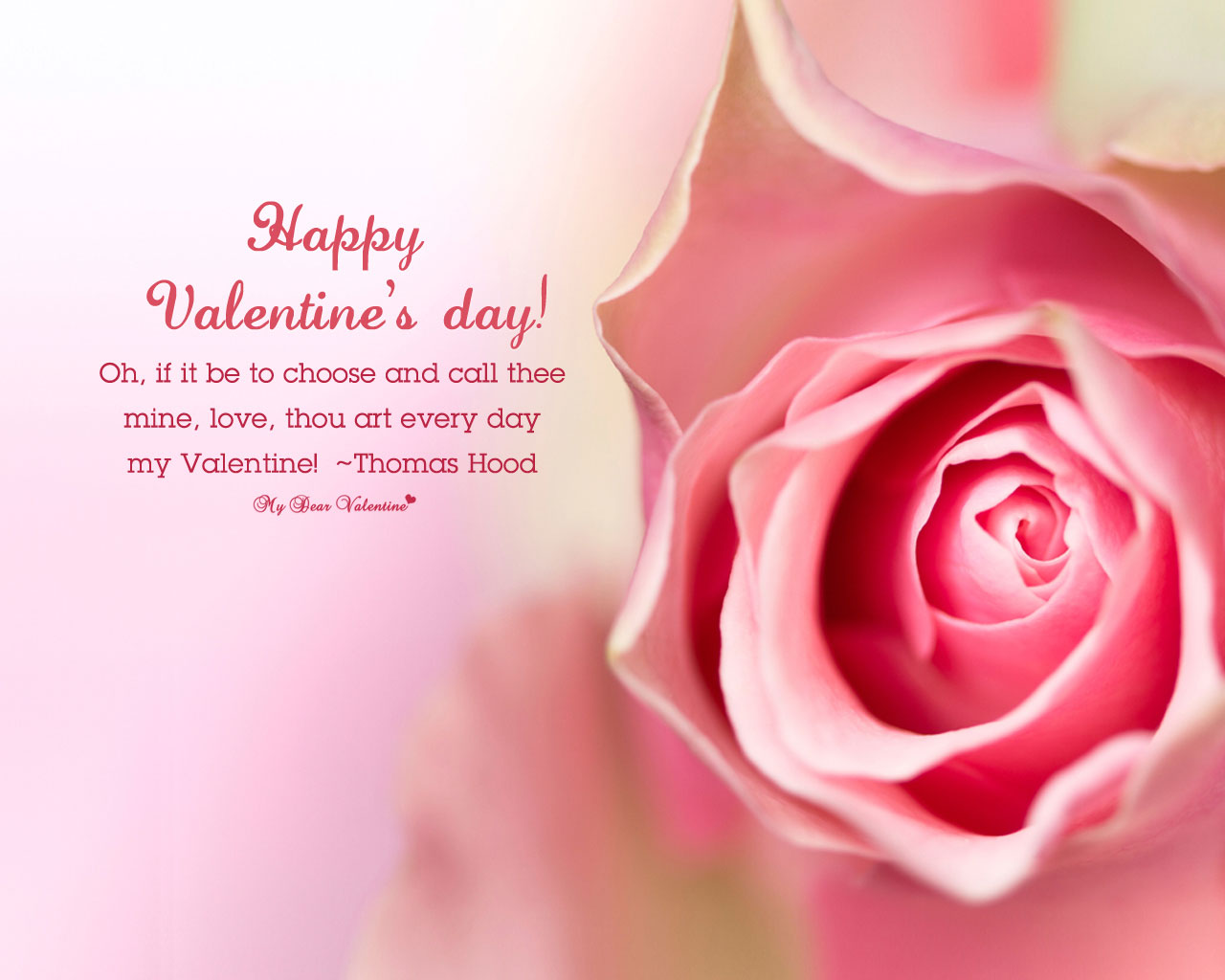 35 Happy Valentine S Day Hd Wallpapers Backgrounds
