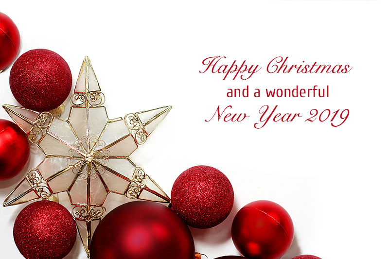 Wishing Your New Happy Quotes Merry Family You Christmas Year And And