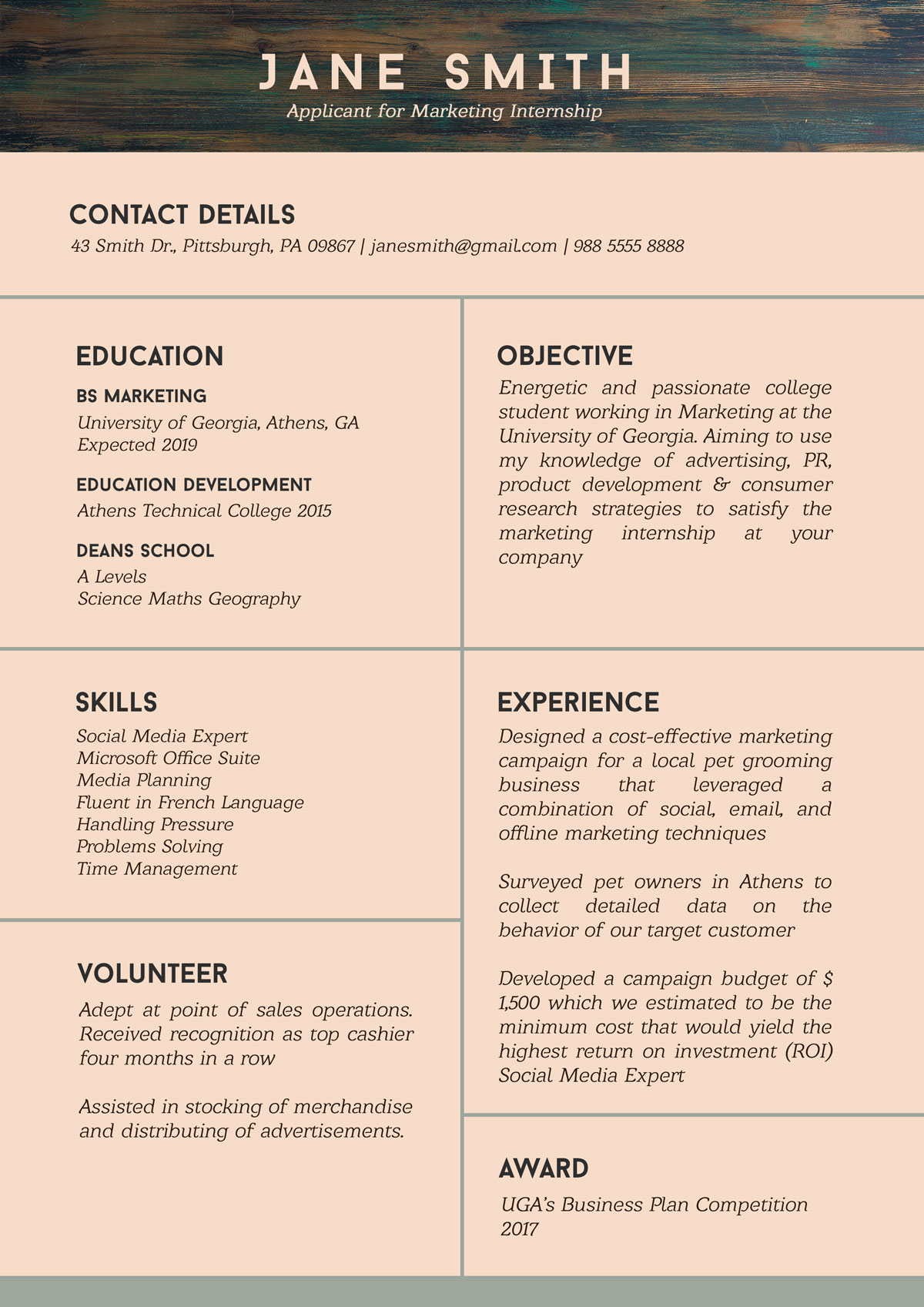 Free Resume Template For Internship Student With No Experience Designbolts