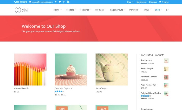 divi 7 Top WooCommerce WordPress Themes on the Market + Why They're Best