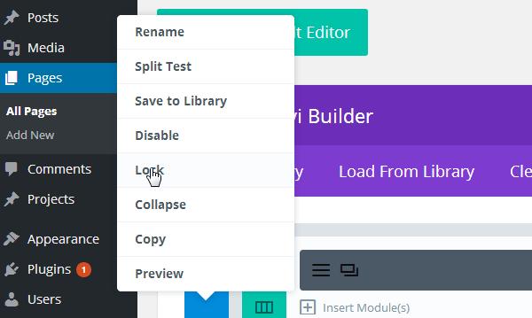 divi-builder-lock-module Divi Builder Plugin Review: An Overview of Elegant Themes' Page Builder Plugin