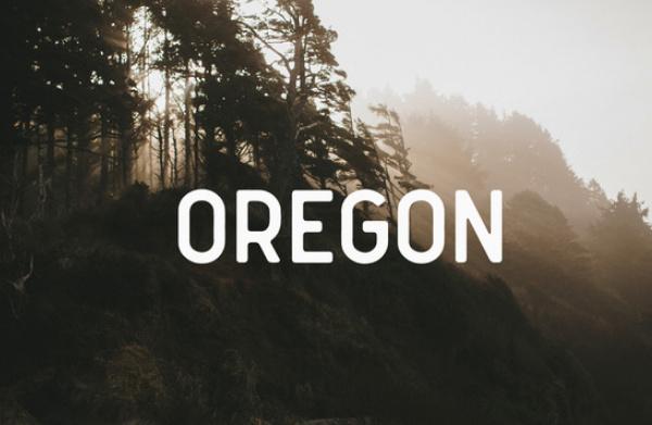 oregon 22 Beautiful Premium Fonts for Logo Designs