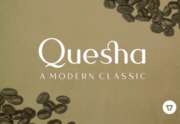 quesha 27 Free & Premium Designer Fonts