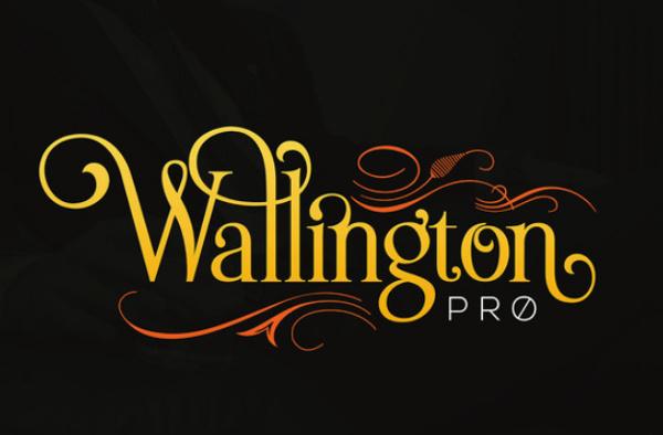 wallington-pro 22 Beautiful Premium Fonts for Logo Designs