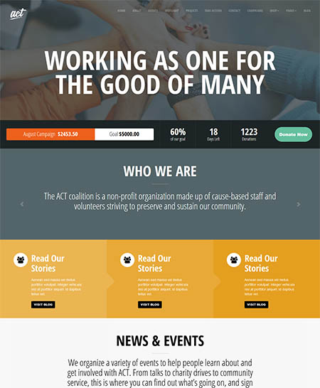 act-wordpress-theme 12 Best Non-Profit & Charity WordPress Themes