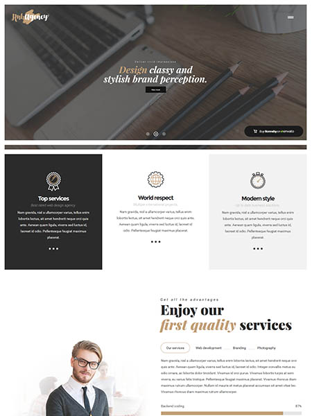 ronnby 11+ Best WordPress Portfolio Themes to Showcase Your Work