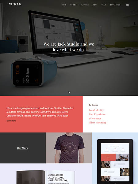 wired-theme 11+ Best WordPress Portfolio Themes to Showcase Your Work